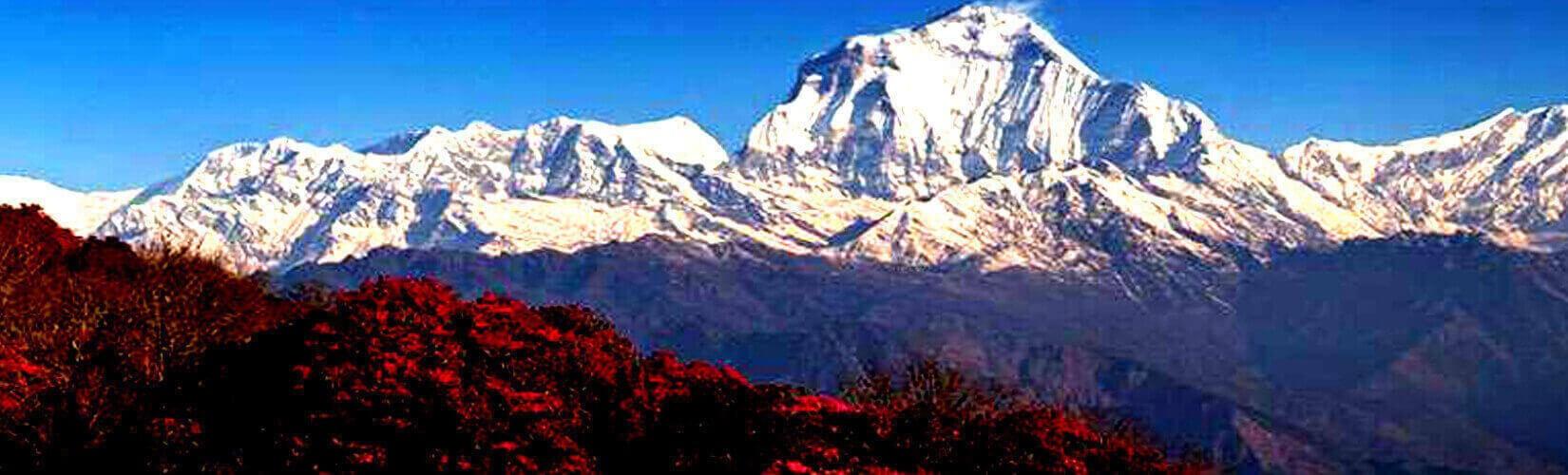 Best Trekking in Nepal   Trekking in Nepal   Nepal Trekking Package   Reasonable Treks